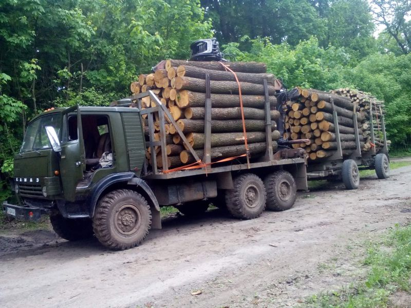 КамАЗ-4310 лесовоз